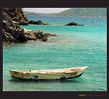 Hope Floats  by ZenAkita