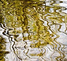 River of Gold by Lisa Wilson