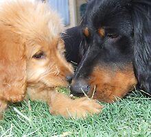 Zoe and Tessa by HayleyJS