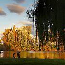 Fishing the Molongolo by Graham Jones