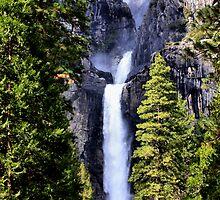 Yosemite Morn by Varinia   - Globalphotos