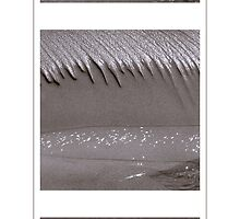 Beach Flow triptych by Duncan Waldron