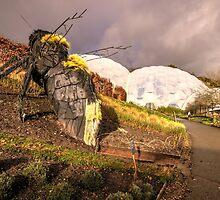 Eden Bee  by Rob Hawkins