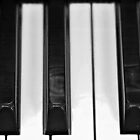 Piano Keys by Swede