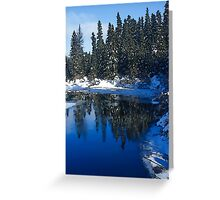 Cool Blue Shadows - Riverbank Winter Forest Greeting Card