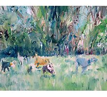RUNNING DOGS Photographic Print