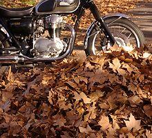 Bike Rustlers by retsilla
