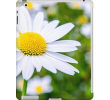 Alpine Daisy  iPad Case/Skin