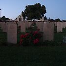 Graveyard Sentinel by Marmadas
