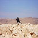 Masada Sentinel by Marmadas