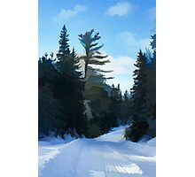 Winter Mood Impressions - Snowy Road in Algonquin Photographic Print