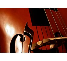 Close String Photographic Print