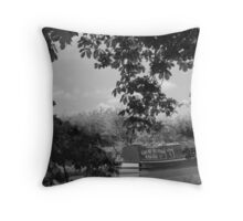 "Narrowboat ""Electra"" Ashby CAnal Throw Pillow"