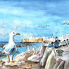 Seagull In Essaouira by Goodaboom