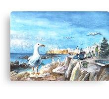Seagull In Essaouira Canvas Print