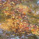 Fallen Leaves by Kathryn Short