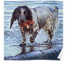 Wet,But Happy..!  Poster