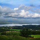 Windemere from Orres Head by Mark  Jones