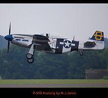 Mustang Flaps Down by Mark  Jones