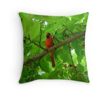 Cardinal in the Mulberry Tree Throw Pillow