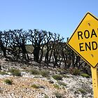 The end of the road...? by wpmorro