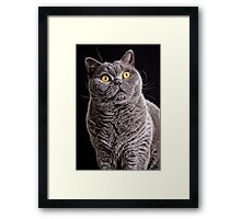Fur Coat Framed Print