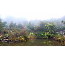 Lake, Mt Tomah Botannical Gardens, Blue Mountains Photographic Print