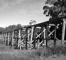Trestle Bridge Timboon    by Berit Hampel