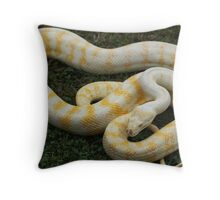 Darwin Python - Albino Throw Pillow