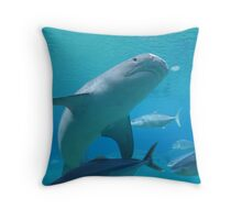 Shark Bay Throw Pillow