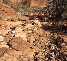 Temple Gorge, Kennedy Range by Blue Gum Pictures