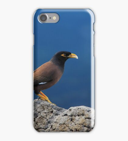 the beauty of myna iPhone Case/Skin