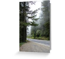 Stop for Sequoias and Fogg Greeting Card