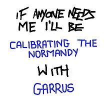If Anyone Needs Me - Garrus Photographic Print