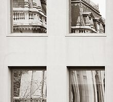 Reflective Juxtaposition #2 by louise