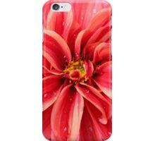 Water Droplet Dahlia iPhone Case/Skin