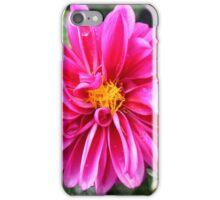 Hot Pink Dahlia iPhone Case/Skin
