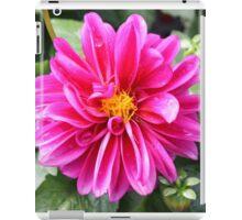 Hot Pink Dahlia iPad Case/Skin
