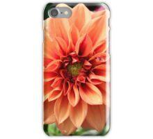 Soft Peach Dahlia iPhone Case/Skin