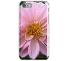 Soft Pink Petals iPhone Case/Skin