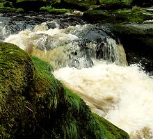 The Strid by Lee Kerr