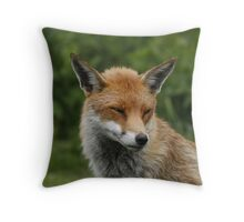 Sly old fox Throw Pillow