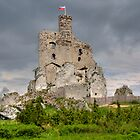 Castle in Mirow by Gaz Gazmajster