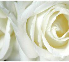 Her Love was Pure by DavidROMAN
