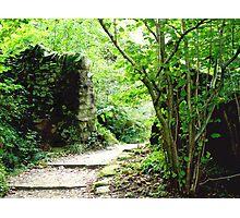 A New Road, A Secret Gate. Photographic Print