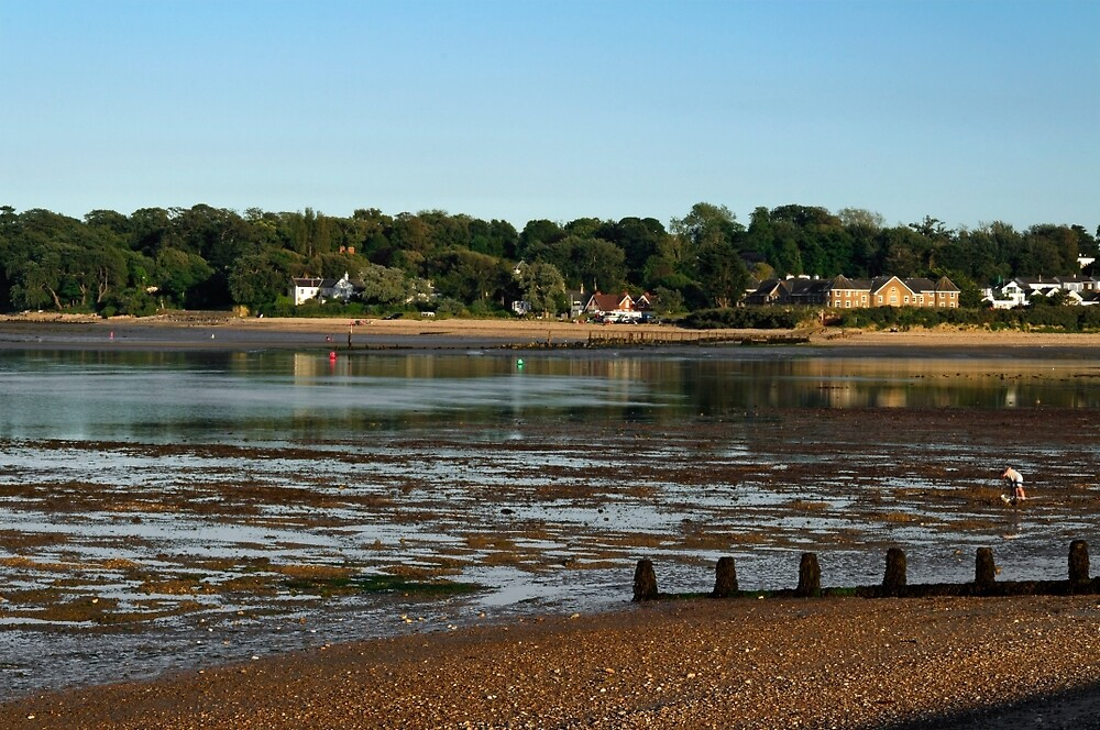 Bembridge from St Helens At Low Tide by Rod Johnson