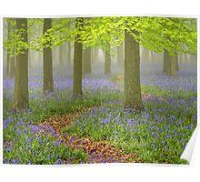 Dockey Wood Mist Poster