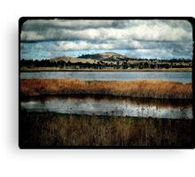 The Birdwatching Hut - Dangars Lagoon, Northern Tablelands, NSW, Australia Canvas Print