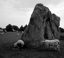 Avebury --- Scraggy sheep and ancient Stones by TonyLegg