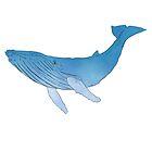 Baleine by TamasTurzo